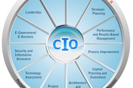 CIO/IT Managers: Importance of Role