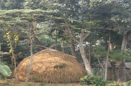 রাধানগর গ্রাম, ৮ নং জয়ন্তিহাজরা ইউনিয়ন, খোকসা, কুষ্টিয়া, খুলনা, বাংলাদেশ
