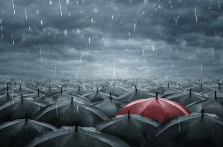 """শিক্ষা খাতে """"Single Umbrella Concept"""""""