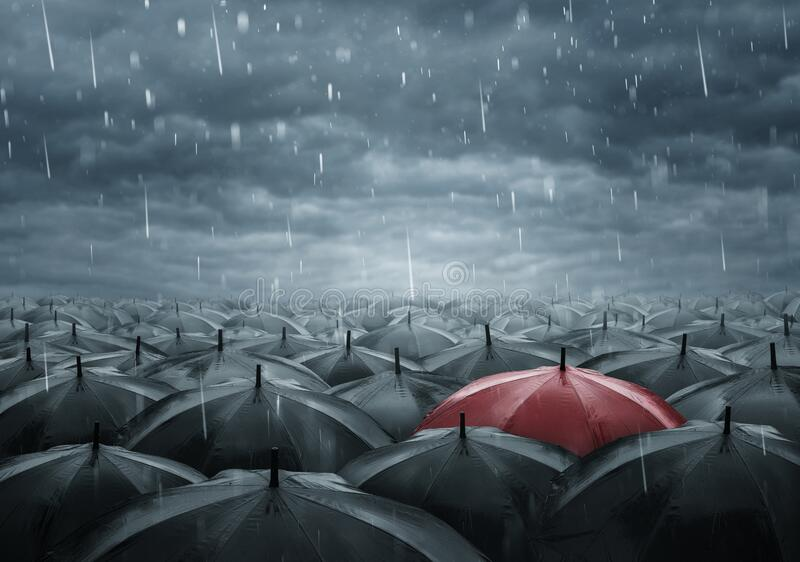 single umbrella concept for education